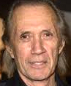 Portrait de David Carradine