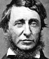 Portrait de Henry David Thoreau