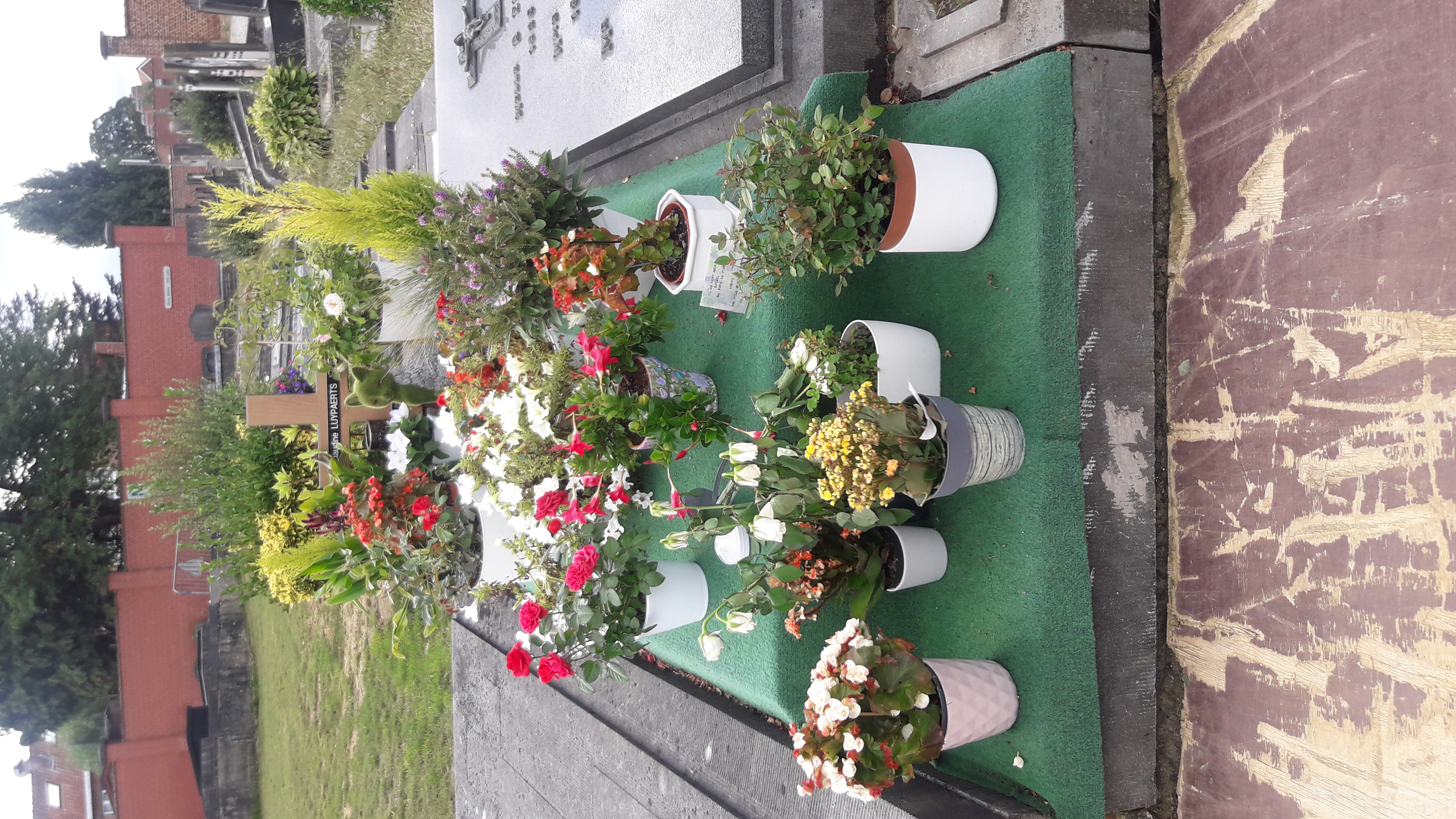 la tombe de maurane
